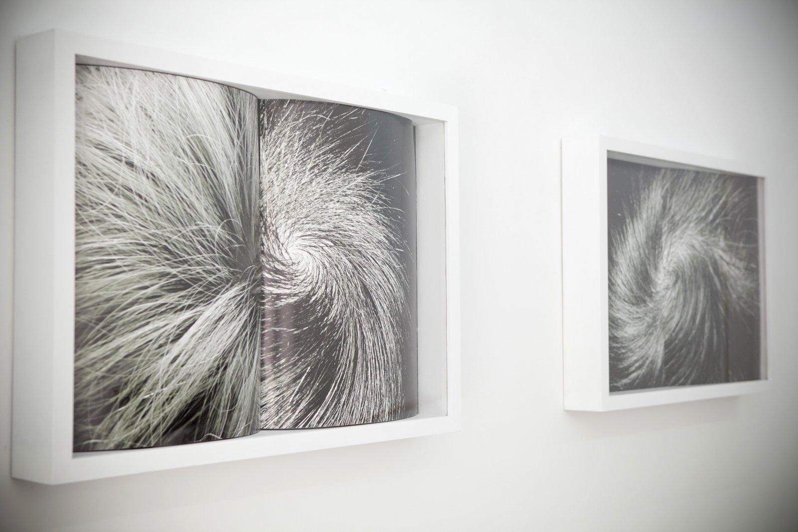 8. Galería Bacelos. \'Pareidolia\'. Alicia Martín