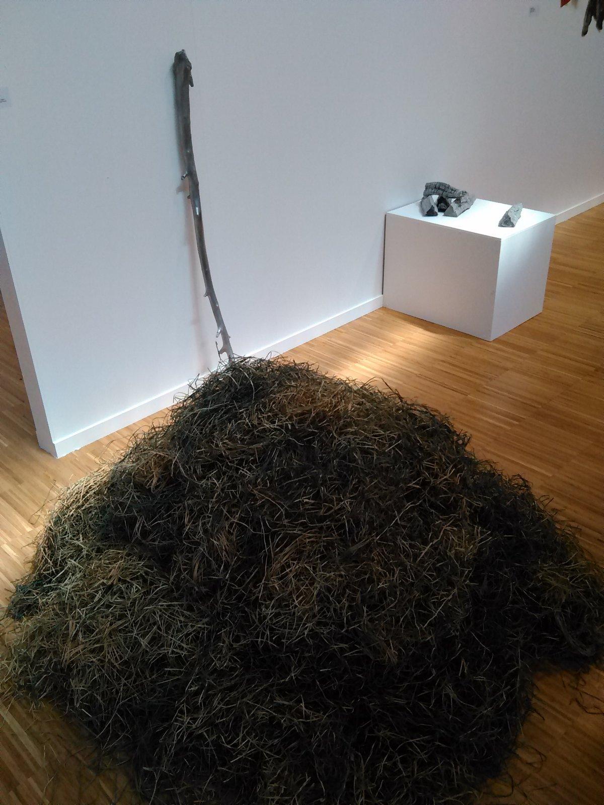 Obra de Thomas Judisch. Galería Collectiva.