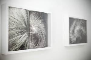 Galería Bacelos. 'Pareidolia'. Alicia Martín