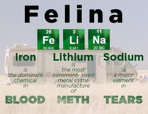 Felina-Breaking-Bad