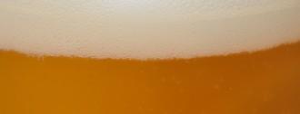 cerveza portada