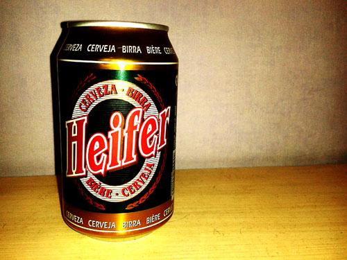 heifer