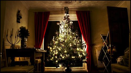 shedBOY-christmas