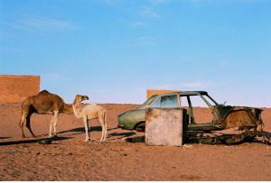 coche y camellos