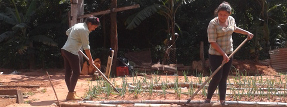 Mujeres trabajando en campo en Mbaracayú.