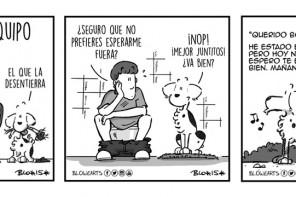Blowearts, o cómo contar la vida con un perro