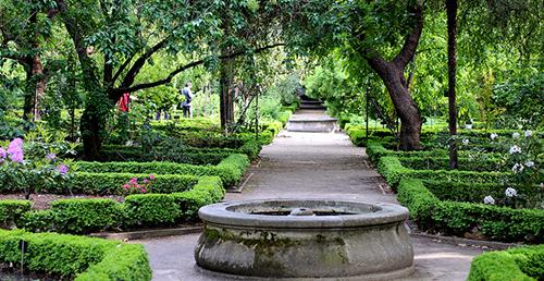 jardin-botanico