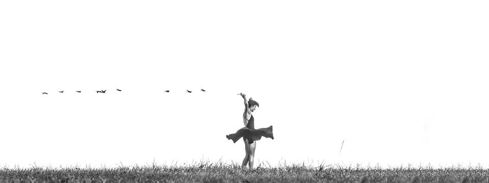 danza-nokton