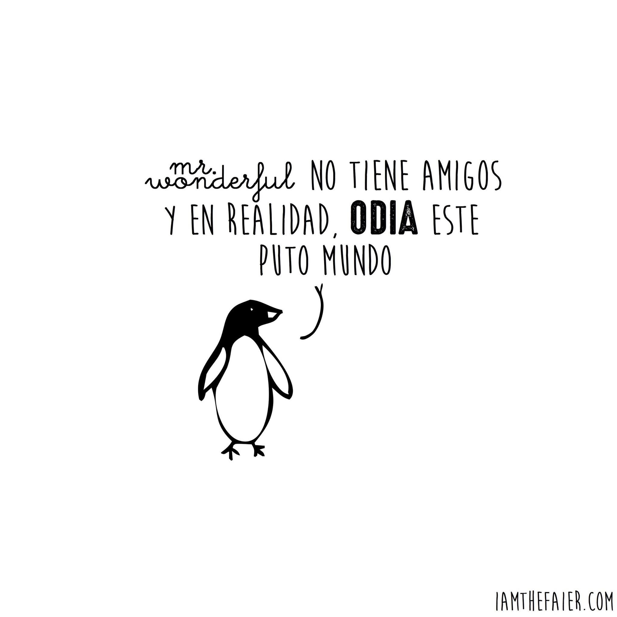 pinguino_iamthefair_nokton