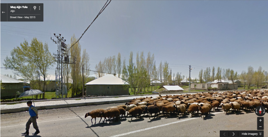 Captura de Google Sheep View.