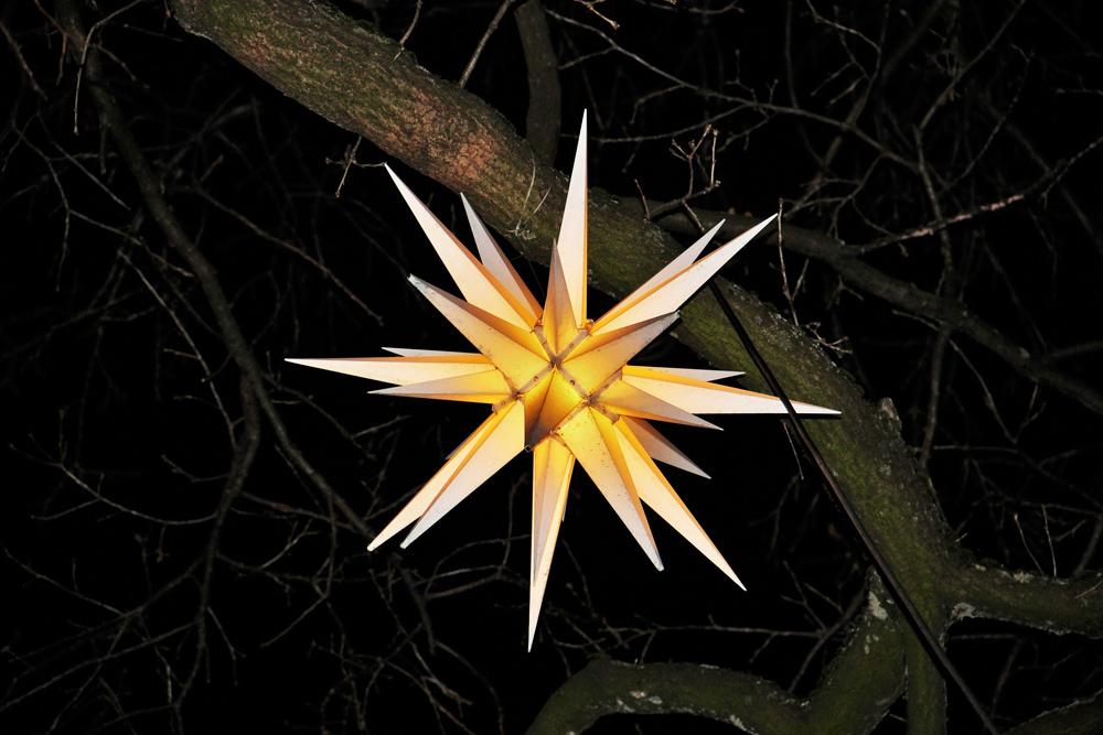 estrella-navidad-pixabay-agenda-nokton