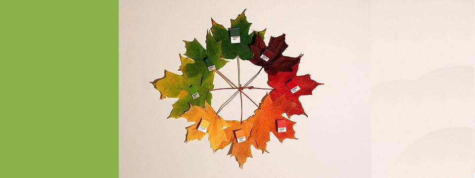 Pantone Greenery junto a otros colores del otoño.