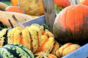 Selección de planes para Halloween