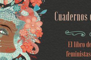 Cuadernos de medusa, la colectivización del relato feminista y LGTB+