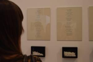 5-Marla Jacarilla-Twin Gallery
