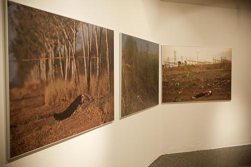 Exposicion-Brito-por-Owain-Shaw