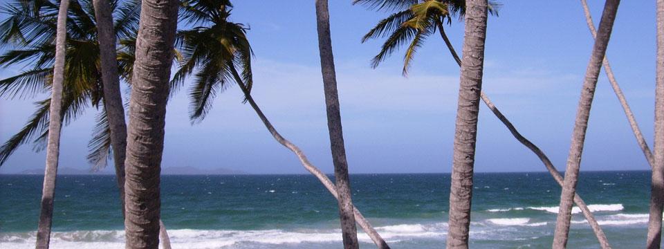 isla-margarita-william-flickr