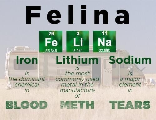Felina-Breaking-Bad