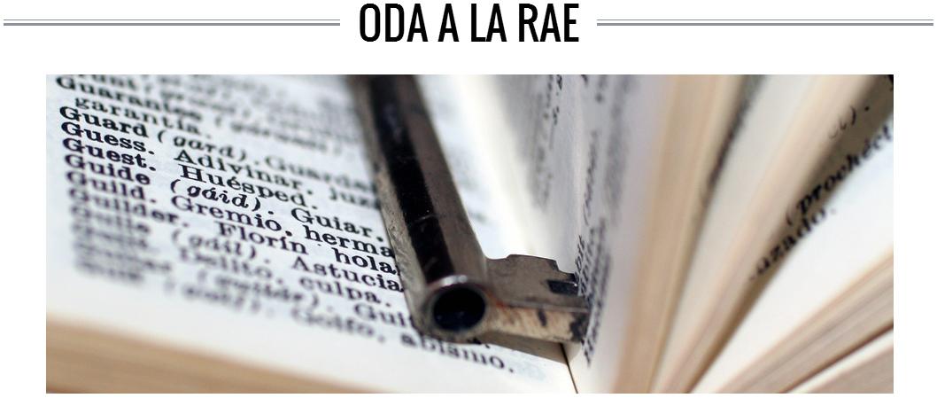 oda-a-la-rae-nokton-magazine-reflexiones-3