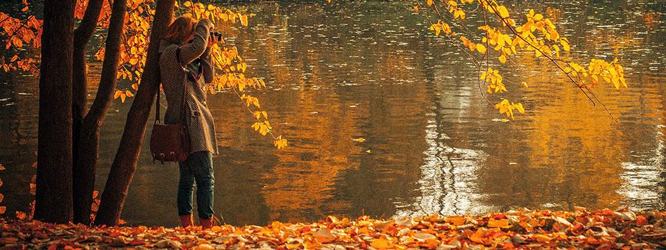 autumn-portada