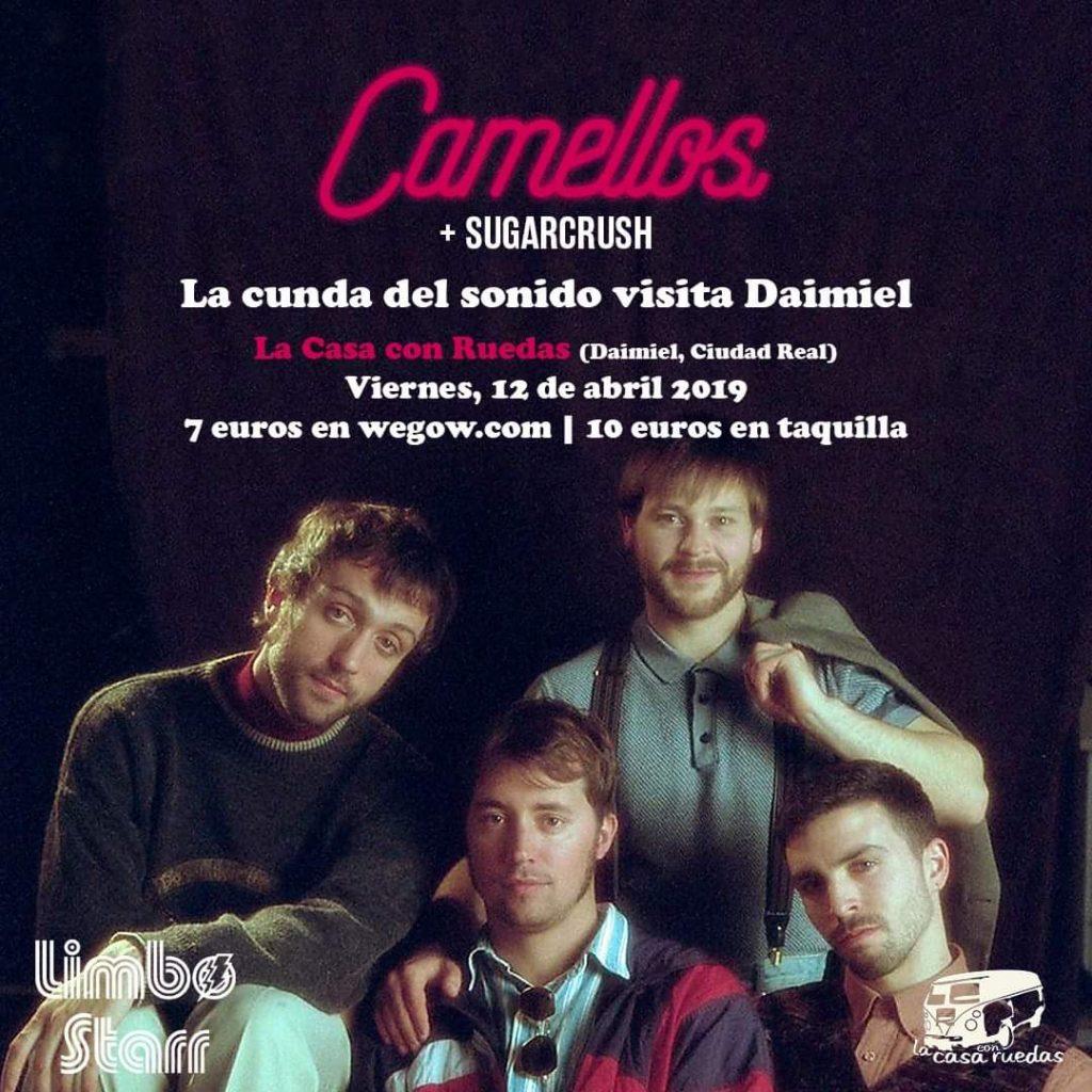 camellos daimiel