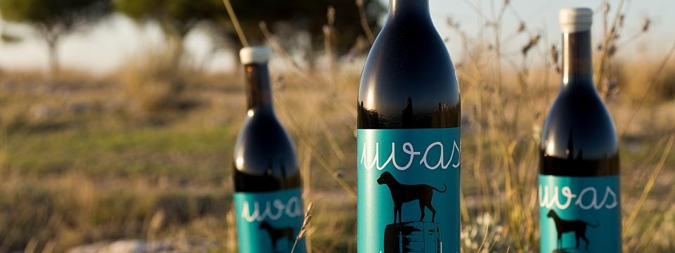 Las uvas nómadas de Malaparte wine.