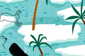 Lo que nos enseñan los libros infantiles sobre cuidar el planeta