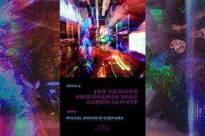 La nueva novela de Miguel Antonio Guevara: un collage narrativo